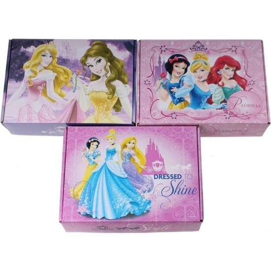 3x Disney Princess opbergboxen/opbergdozen van karton